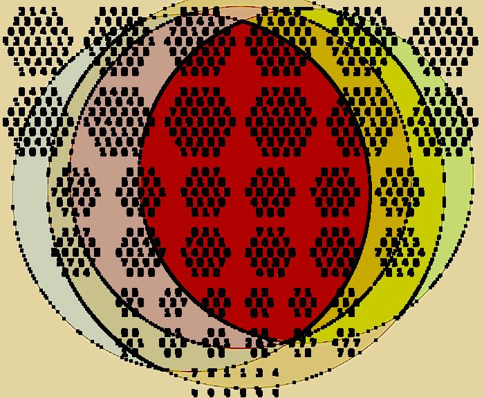 piHEX-999999